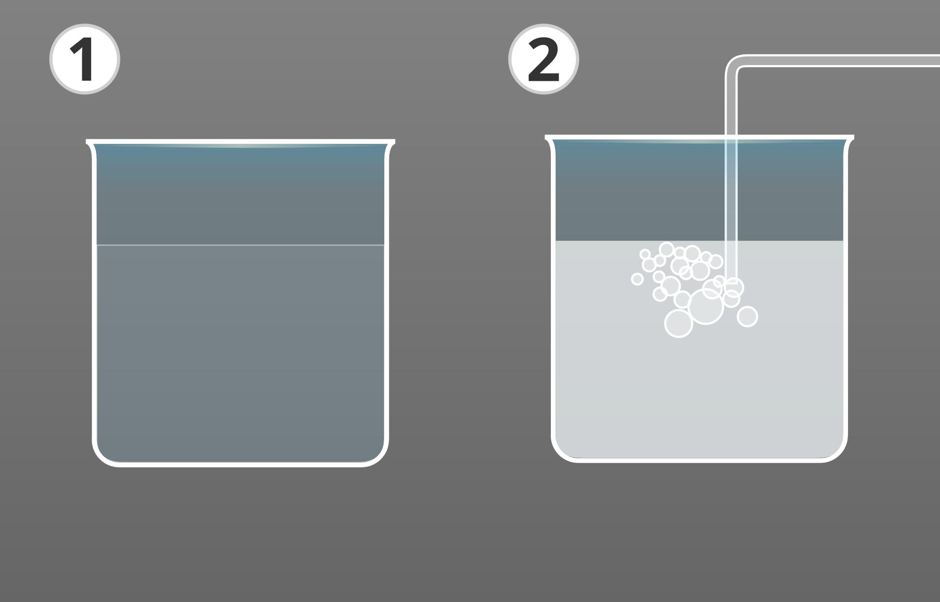 Ilustracja przedstawia dwa połączone ze sobą rysunki na szarym tle. Na ilustracji po lewej stronie zlewka zprzezroczystym płynem. Po prawej stronie taka sama zlewka zpłynem mętnym. Wzlewce znajduje się wygięta pod kątem 90 stopni rurka lub słomka. Wydobywające się zjej zanurzonego końca bąbelki sugerują, że przez rurkę do płynu wzlewce wtłaczany jest jakiś gaz.
