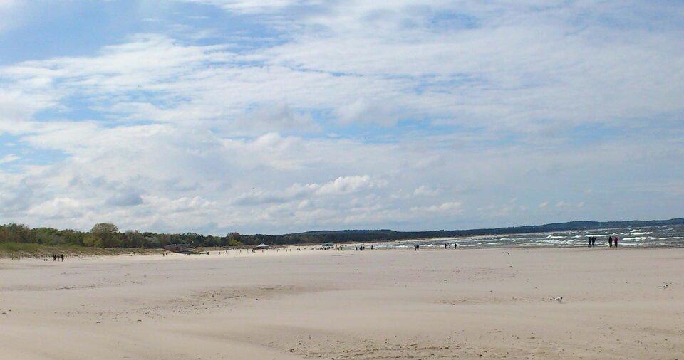 Na zdjęciu szeroka piaszczysta plaża, wtle brzeg morza, zlewej strony niskie wydmy porośnięte trawami idrzewami.