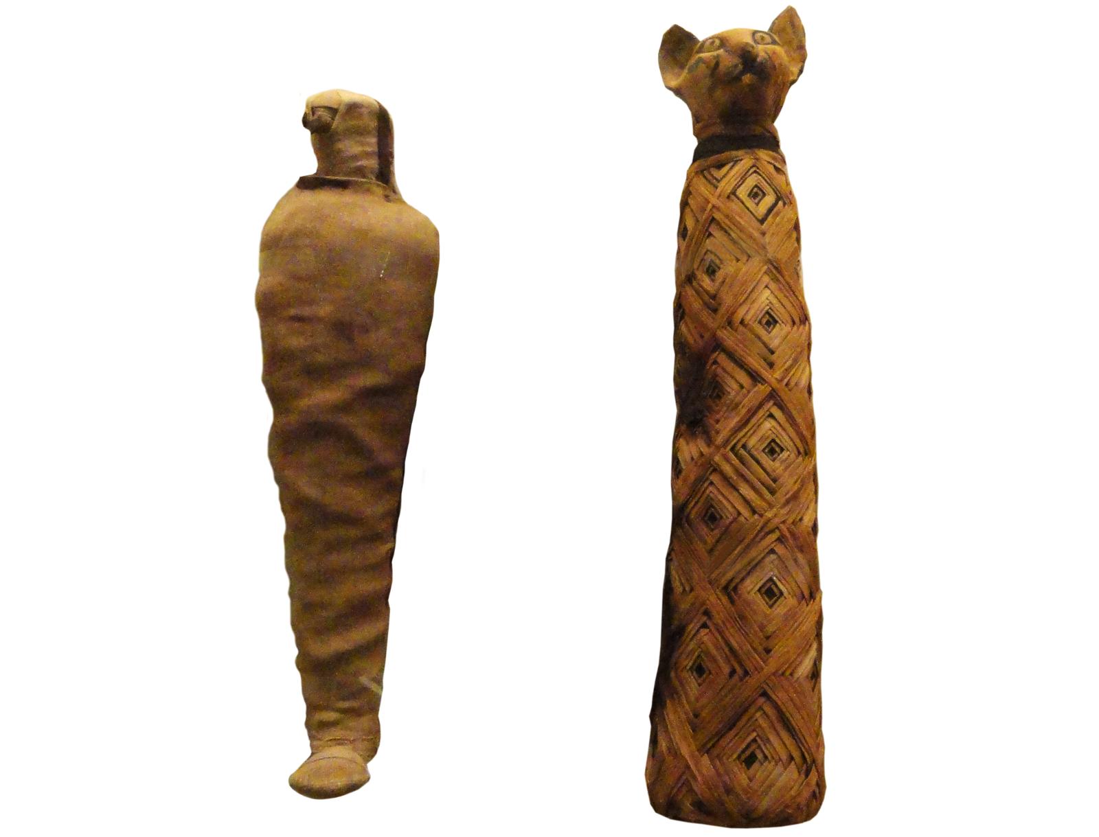Mumie zwierząt odkopane przez archeologów, obecnie przechowywane wKrólewskim Muzeum wToronto wKanadzie Mumie zwierząt odkopane przez archeologów, obecnie przechowywane wKrólewskim Muzeum wToronto wKanadzie Źródło: domena publiczna.