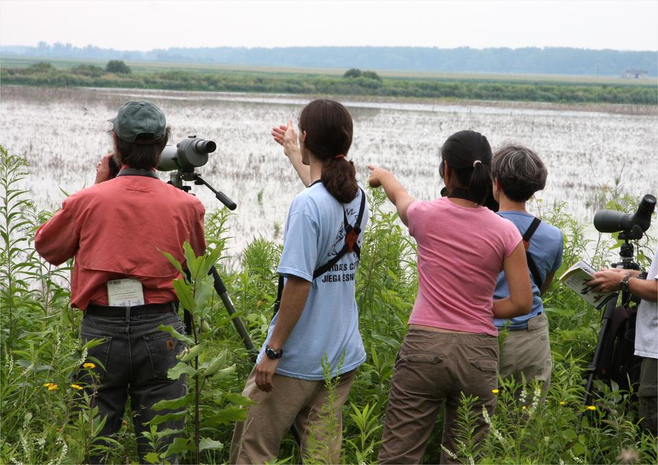 Fotografia przedstawia grupę ludzi od tyłu. Dwie osoby wskazują coś na zalanym wodą terenie wgłębi. Przy innych stoją lunety na statywach. Ludzie obserwują przeloty ptaków wDolinie Baryczy.