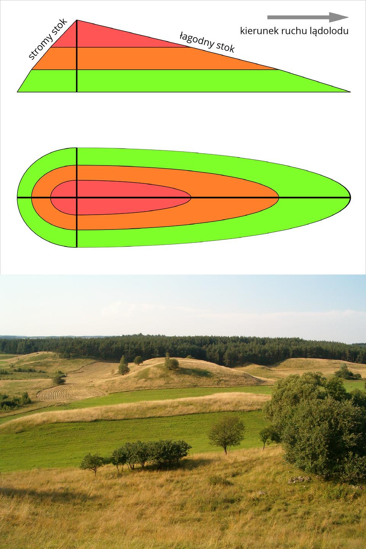 Schemat przedstawiający Drumlin - niewysoki pagórek oeliptycznym, asymetrycznym kształcie, wraz zgraficzną ilustracją jego budowy.