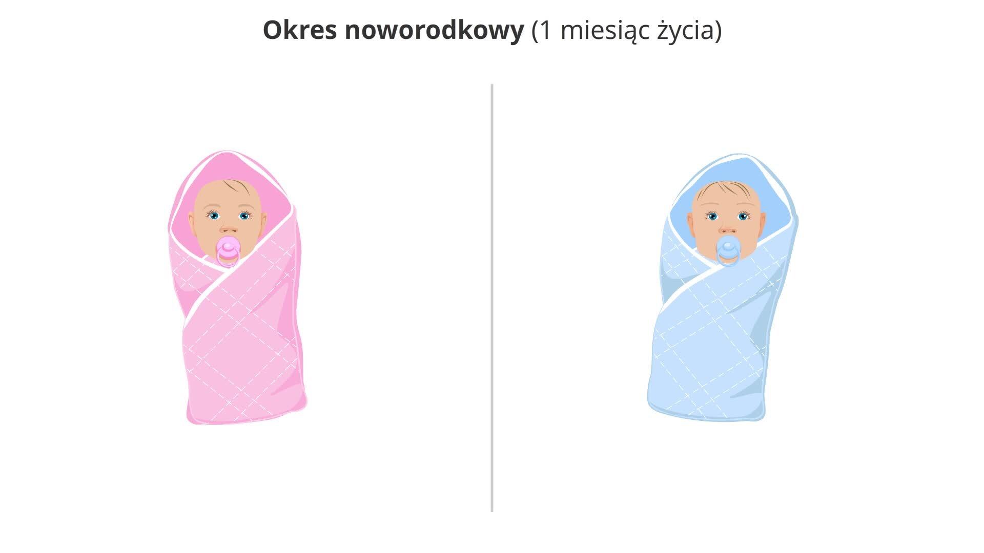 Ilustracja prezentuje noworodka żeńskiego wróżowym beciku ize smoczkiem wbuzi oraz noworodka męskiego wniebieskim beciku irównież ze smoczkiem.
