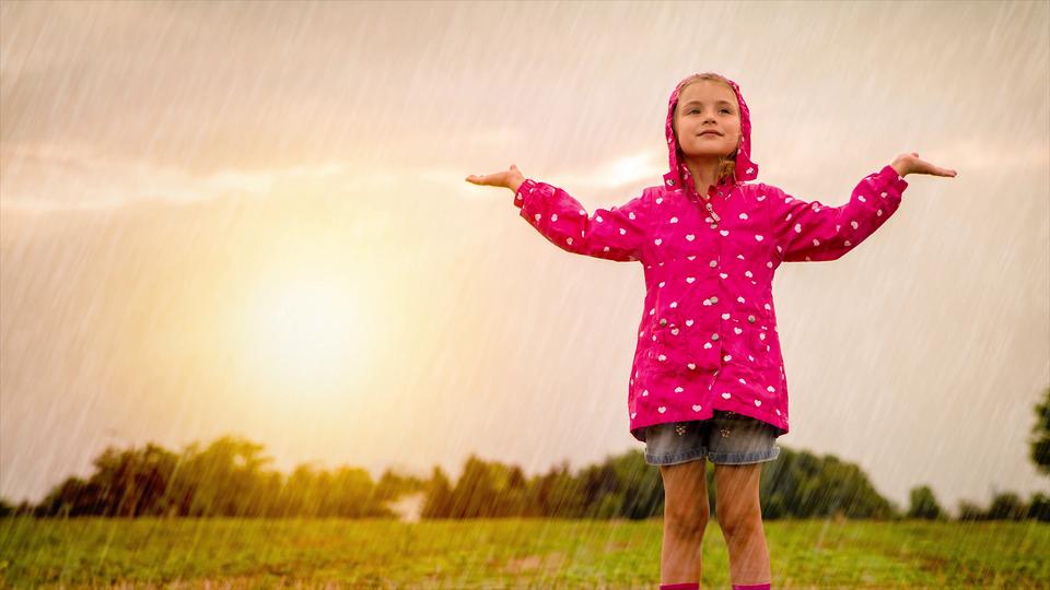 Jeśli korzystasz zczytnika ekranu NVDA, przełącz go wtryb formularza. Film wyjaśniający czym jest ogródek meteorologiczny, jakie przyrządy znajdują się na jego terenie oraz czym są składniki pogody.