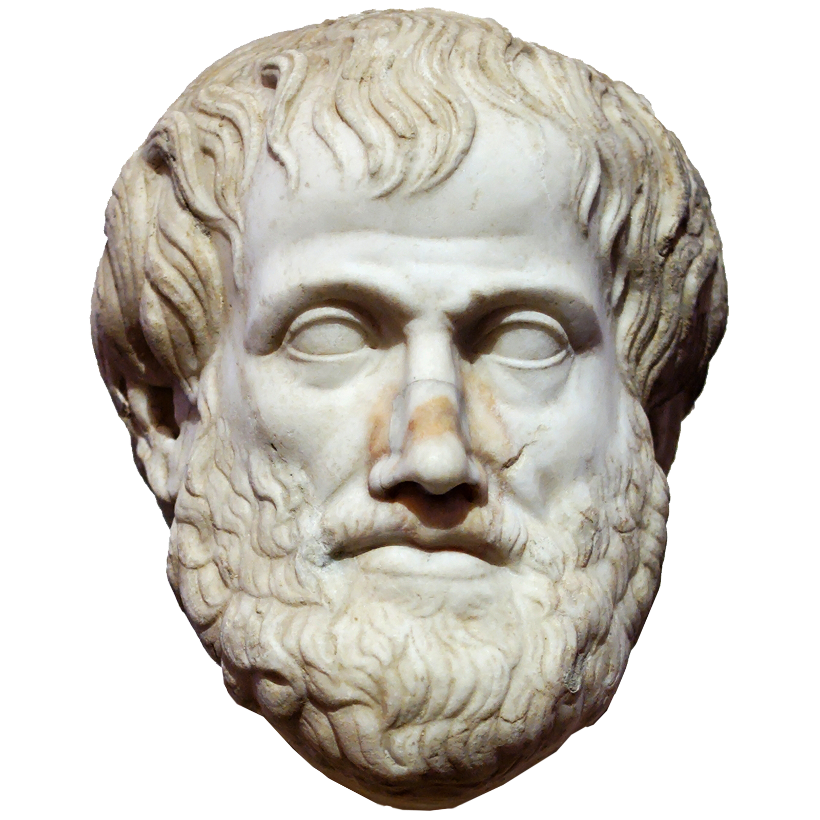 Arystoteles – podobizna przechowywana wMuzeum Narodowym wRzymie Arystoteles – podobizna przechowywana wMuzeum Narodowym wRzymie Źródło: domena publiczna.