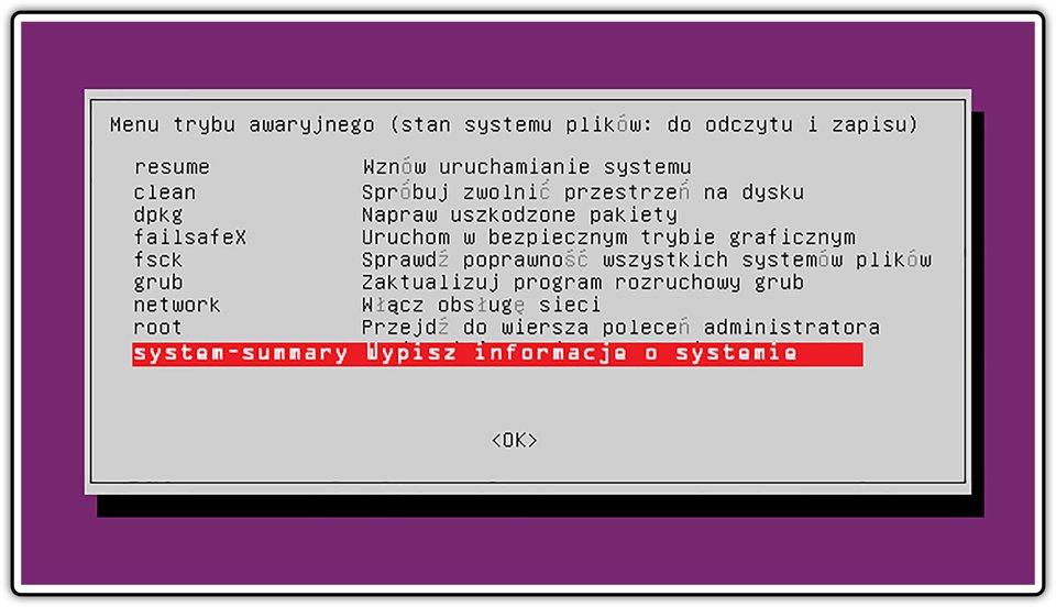 Zrzut okna menu trybu awaryjnego wsystemie Linux Ubuntu zzaznaczoną opcją: Wpisz informacje osystemie
