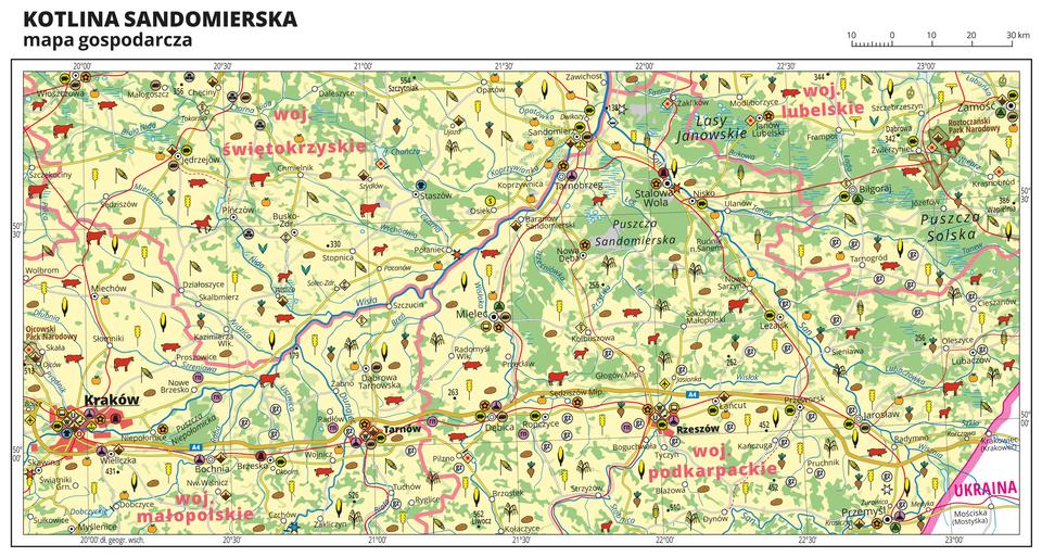 Ilustracja przedstawia mapę gospodarczą Kotliny Sandomierskiej. Tło mapy wkolorze żółtym (grunty orne), jasnozielonym (łąki ipastwiska) izielonym (lasy). Mapa obejmuje tereny od Krakowa po Zamość. Na mapie sygnatury obrazujące uprawy poszczególnych roślin, hodowlę zwierząt, przemysł, górnictwo ienergetykę, komunikację, turystykę, naukę, kulturę isztukę. Największe zagęszczenie sygnatur wKrakowie. Duże zagęszczenie sygnatur wTarnowie, Rzeszowie, Sandomierzu iZamościu. Na obszarze całej mapy rozmieszczone sygnatury hodowli iupraw. Na mapie przedstawiono sieć dróg ikolei, porty wodne ilotnicze, granice województw, granicę państwa. Opisano województwa świętokrzyskie, małopolskie, podkarpackie ilubelskie. Opisano kompleksy leśne, na przykład Puszczę Sandomierską iparki narodowe. Wprawym dolnym rogu mapy opisano Ukrainę. Mapa zawiera południki irównoleżniki, dookoła mapy wbiałej ramce opisano współrzędne geograficzne co trzydzieści minut.