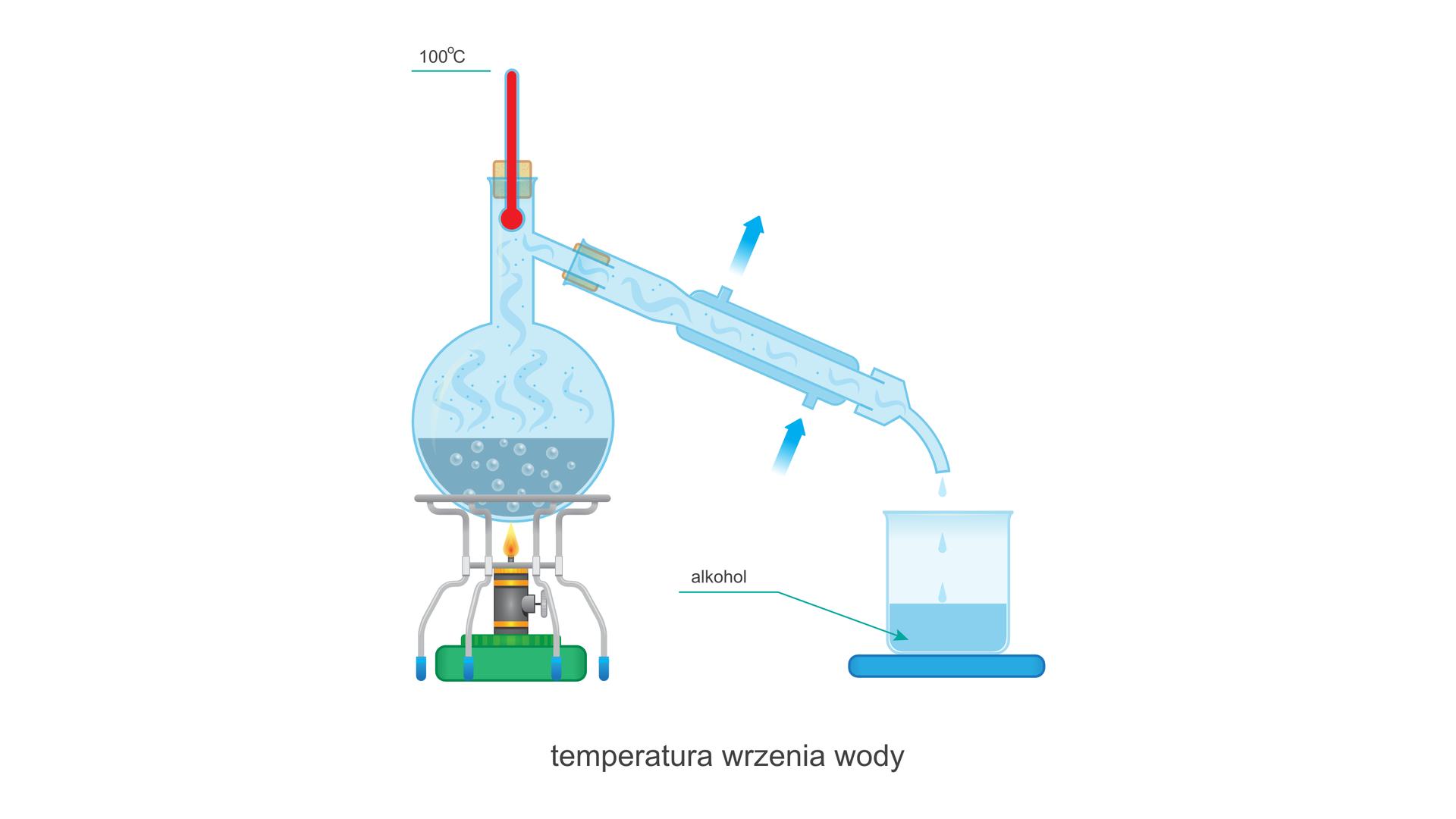 Ilustracja przedstawia zestaw do destylacji zwłączonym palnikiem. Termometr wkolbie wskazuje temperaturę 100 stopni Celsjusza. Przy przyłączach wody wkolbie znajdują się strzałki określające kierunek przepływu wody. Dolne przyłącze pełni rolę wlotu, agórne wylotu. Zkońca wylotowego chłodnicy do zlewki kapią krople cieczy zbierającej się wzlewce. Płyn ten oznaczony jest jako: alkohol. Cały rysunek nosi podpis: temperatura wrzenia wody.