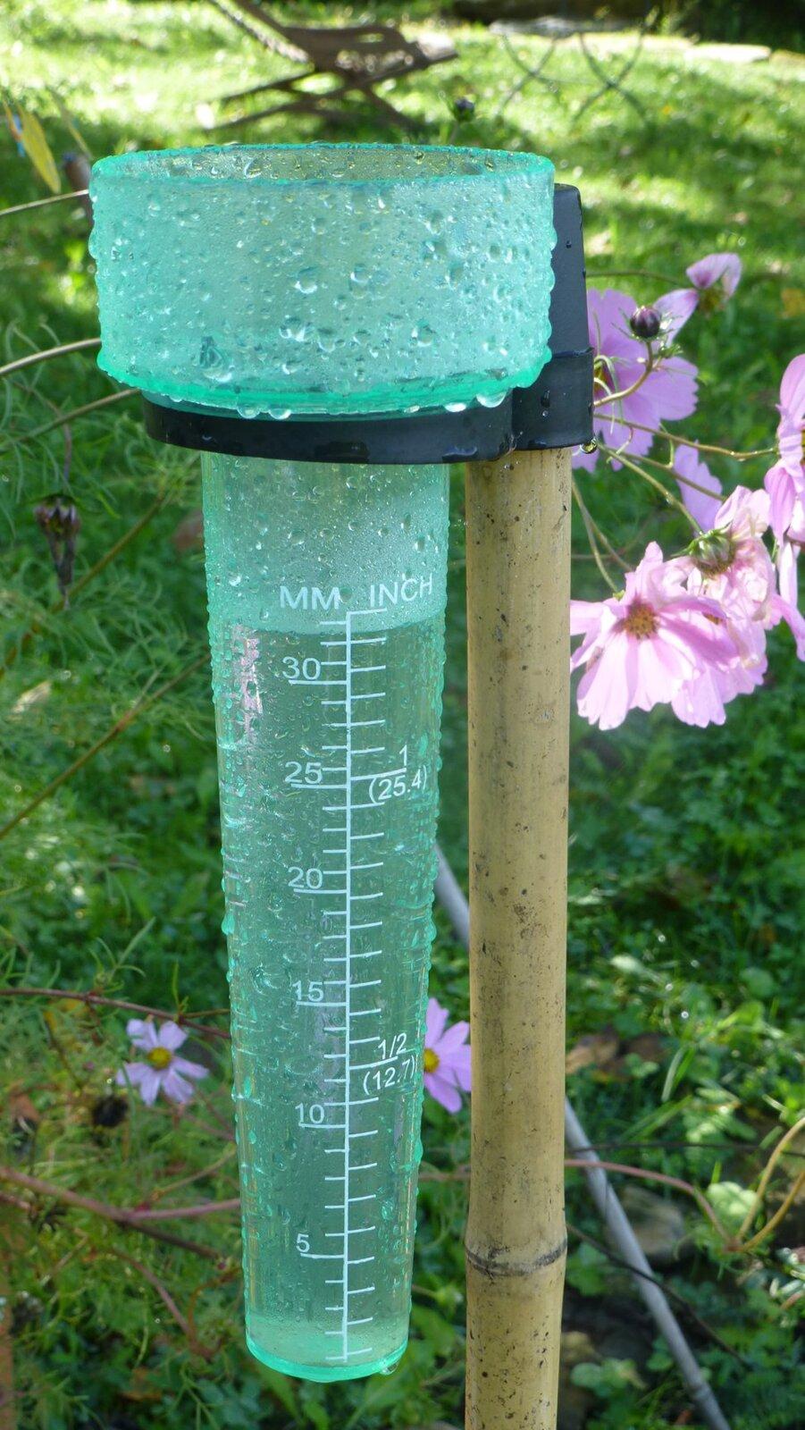 Zdjęcie przedstawia deszczomierz. Jest to szklane lub metalowe naczynie wkształcie walca. Wnaczyniu zbiera się woda opadowa.