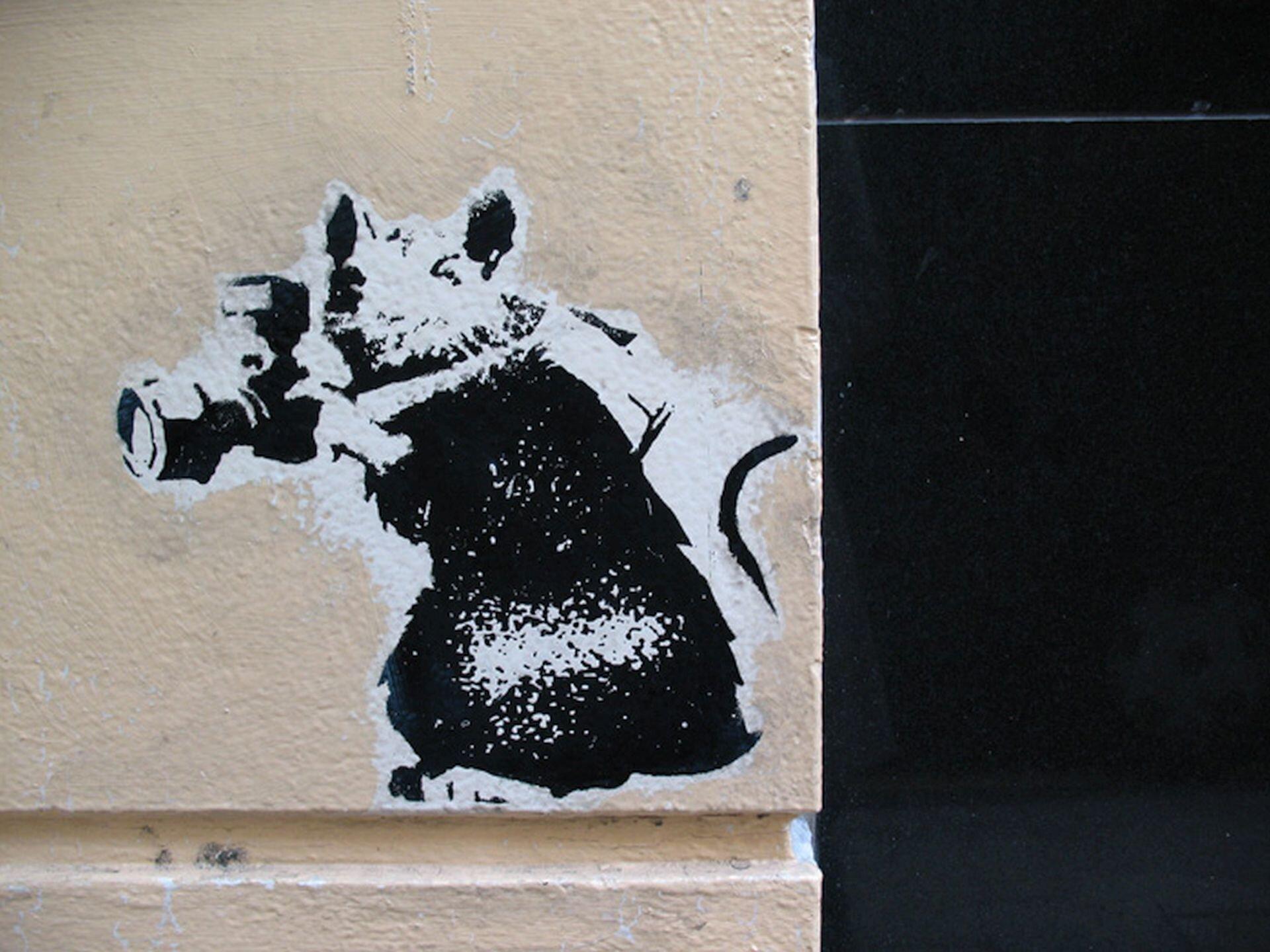 Ilustracja przedstawia czarno-biały street art Banksy'ego wykonany techniką szablonu. Ukazuje szczura zaparatem fotograficznym.