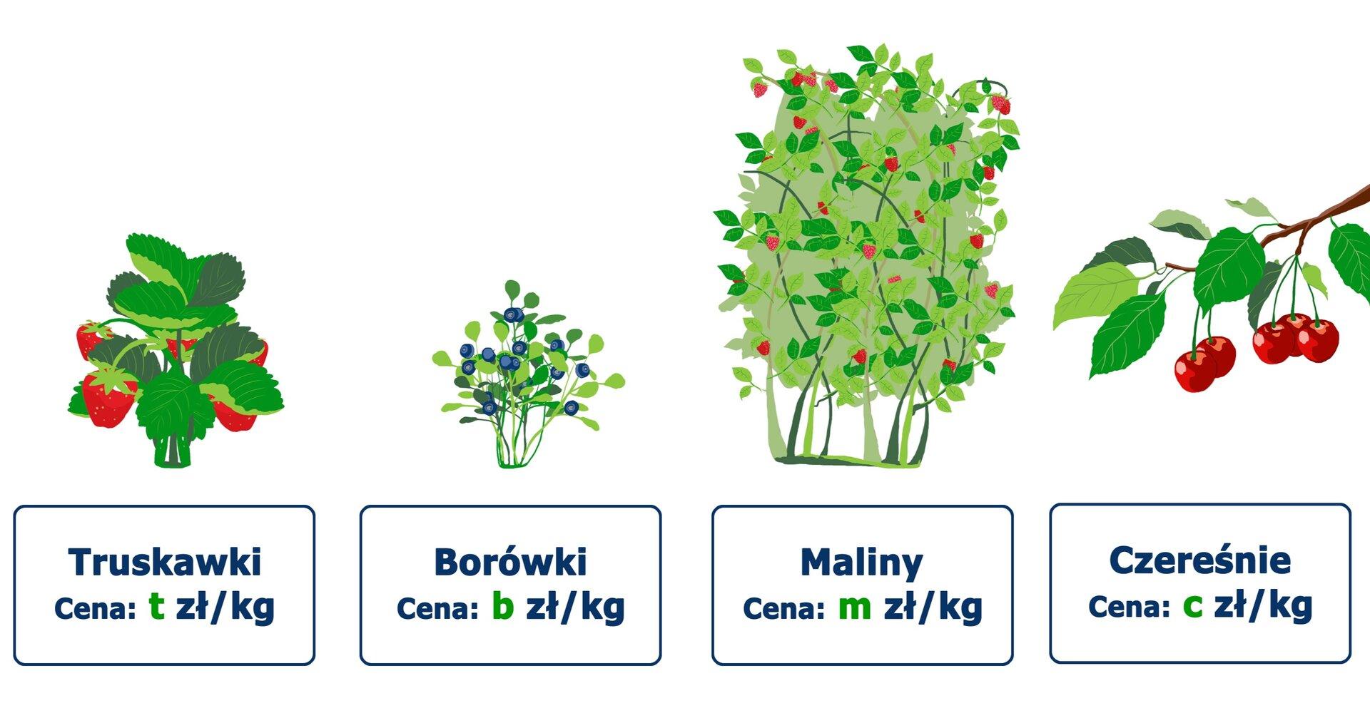 Rysunki owoców: truskawki – cena tzł za kilogram, borówki – cena bzł za kilogram, maliny – cena mzł za kilogram, czereśnie – czł za kilogram.