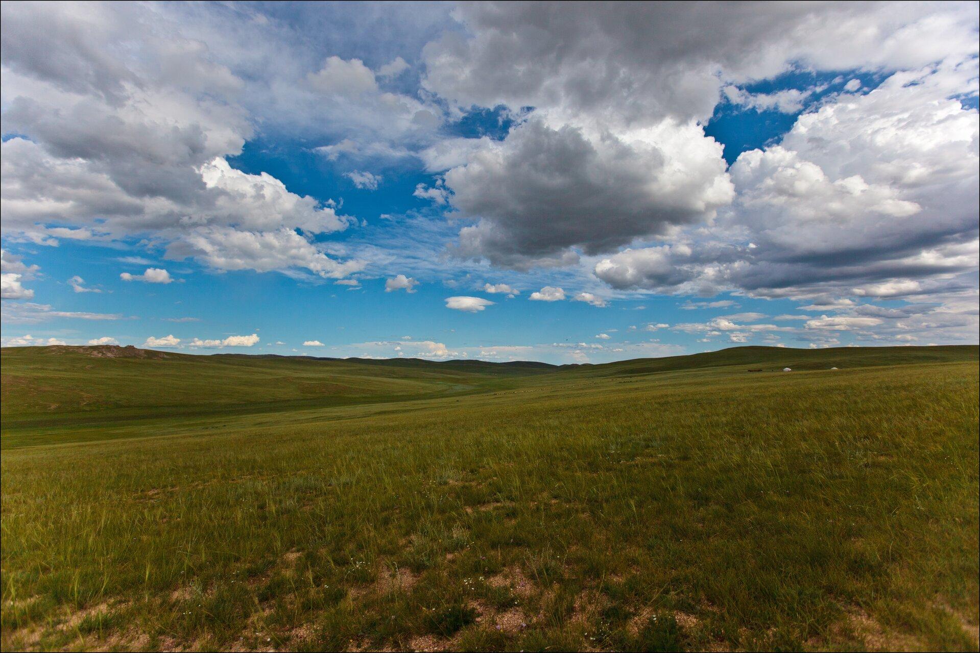 Fotografia prezentuje krajobraz stepu. Widoczny rozległy, równinny teren porośnięty trawą.