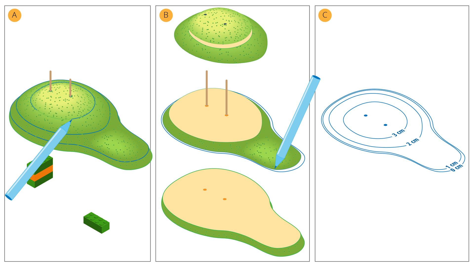 Ilustracja prezentuje kolejne etapy wyznaczania poziomic na modelu.