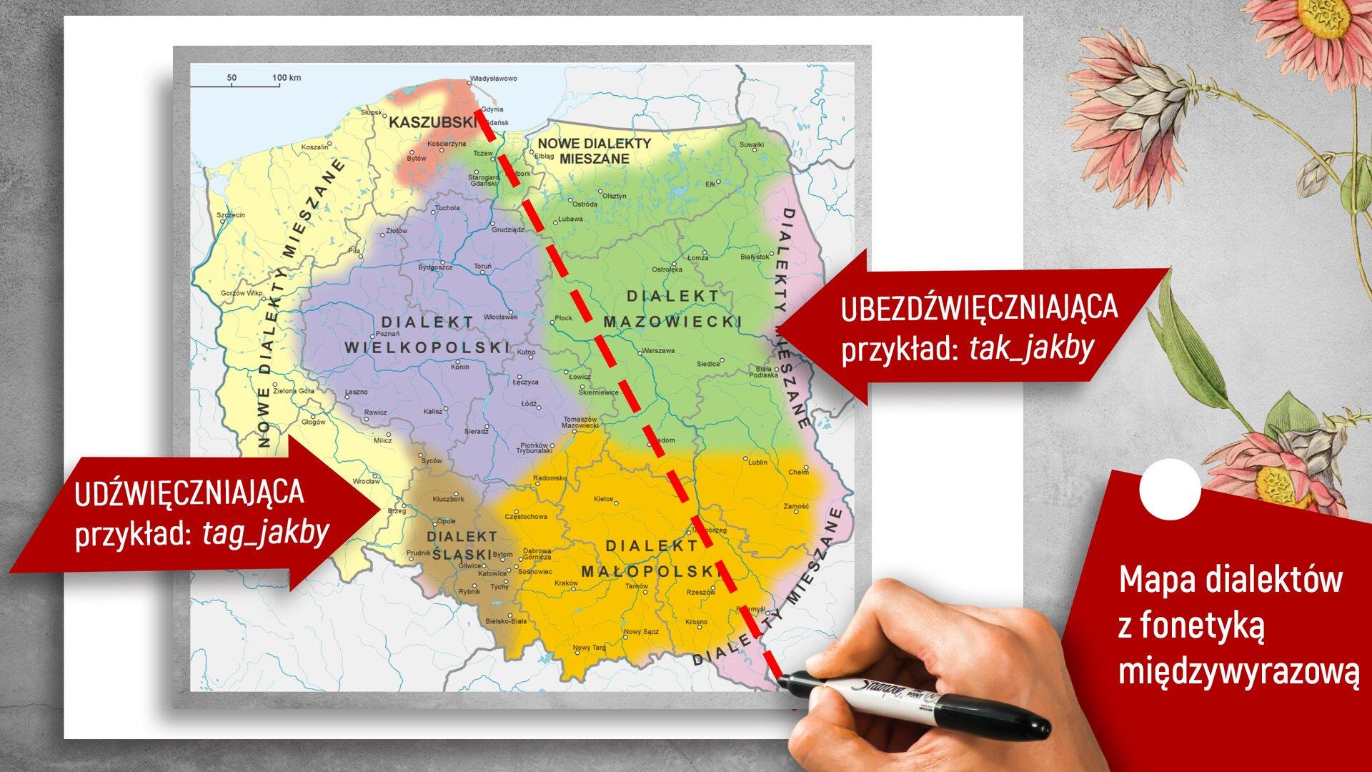 """Ilustracja przedstawia mapę Polski podzieloną na dialekty. Każdy znich jest oznaczony innym kolorem. Mapa jest również przedzielona ukośną przerywaną kreską. Wlewej części znajduje się czerwona strzałka znapisem: """"UDŹWIĘCZNIENIAJĄCA przykład: tag_jakby"""", apo drugiej stronie taka sama strzałka, ale znapisem: """"UBEZDŹWIĘCZNIAJĄCA przykład: tak_jakby"""". Wprawym dolnym rogu umieszczono czerwony czworobok, awnim napis: """"Mapa dialektów zfonetyką międzywyrazową""""."""