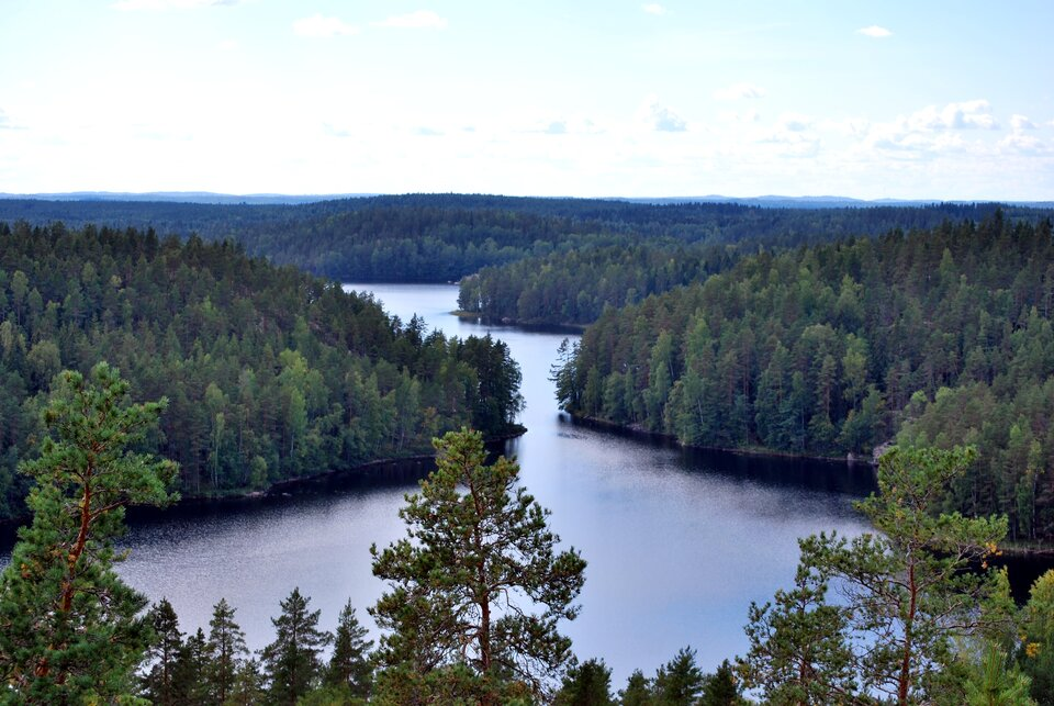 Na zdjęciu pagórkowaty teren porośnięty gęstymi lasami. Przez środek przebiega wydłużone wkształcie rynny jezioro. Na pierwszym planie jezioro rozszerza się.
