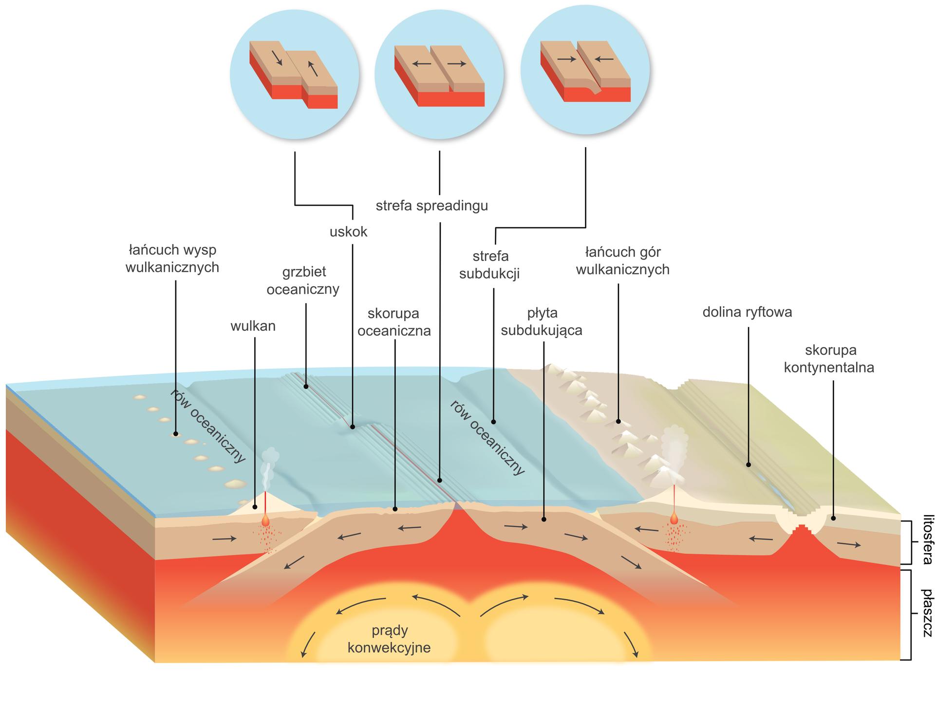 Przekrój przez litosferę ipłaszcz Ziemi. Prostopadłościan. Warstwa spodnia wkolorze czerwonym. Na środku zaznaczone kolorem żółtym owalne kształty. To prądy konwekcyjne. Nad warstwą czerwoną jest beżowa warstwa. To płyta subdukująca wwarstwie litosfery. Nie ma ona ciągłości. Na wysokości prądów konwekcyjnych jest wypiętrzona, ajej dolne części wchodzą wpłaszcz Ziemi. Warstwa wierzchnia to zlewej strony morze wkolorze niebieskim, azprawej ląd wkolorze zielonym. Na morzu zaznaczone rowy igrzbiety oceaniczne. Na lądzie zaznaczone łańcuchy górskie idoliny ryftowe. Powyżej całego przekroju wniebieskich kółkach umieszczono przykłady możliwych ruchów na granicach płyt litosfery. Zlewej strony przesuwanie. Na środku rozsuwanie. Zprawej strony zsuwanie.