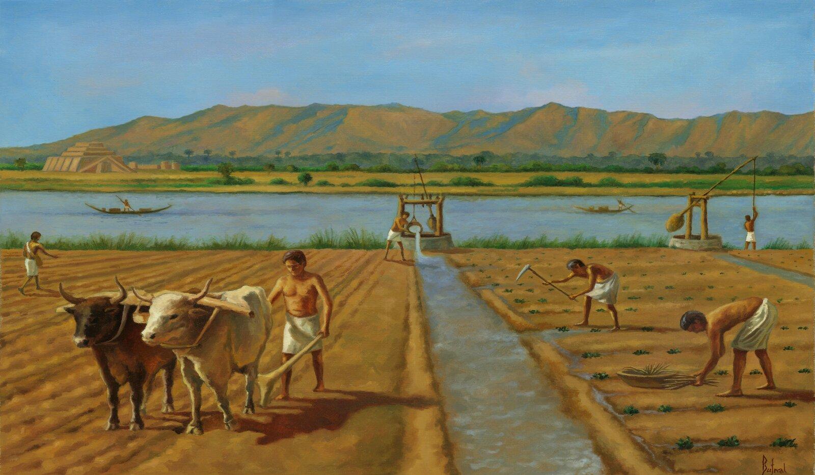 Starożytni rolnicy za pomocą żurawia nabierali zrzeki wodę, anastępnie wlewali ją do kanałów. Starożytni rolnicy za pomocą żurawia nabierali zrzeki wodę, anastępnie wlewali ją do kanałów. Źródło: Contentplus.pl sp. zo.o., Dariusz Bufnal, licencja: CC BY 3.0.