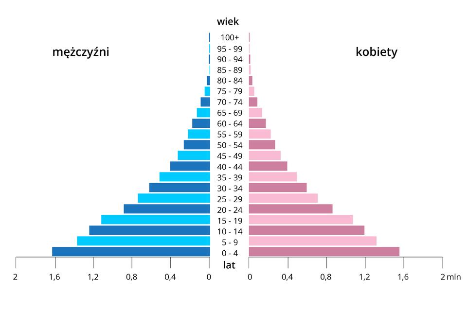 Wykres przedstawiający piramidę wieku społeczeństwa młodego: szeroka podstawa wskutek dużej liczby urodzeń, szybko zwężająca się ku górze wskutek dużej umieralności.
