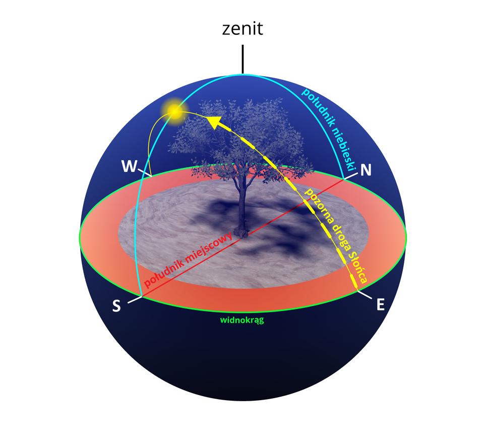 Ilustracja przedstawia widomą wędrówkę Słońca nad horyzontem. Horyzont to zielony okrąg. Droga Słońca przedstawiona wpostaci żółtego półokręgu nachylonego do powierzchni horyzontu pod kątem około sześćdziesięciu stopni. Rozpoczyna się na linii horyzontu wpunkcie oznaczonym literą E– wschód, akończy wpunkcie oznaczonym literą W– zachód. Wnajwyższym punkcie żółtego półokręgu narysowane jest Słońce. To górowanie Słońca. Prostopadle do żółtego półokręgu narysowany jest niebieski półokrąg nad powierzchnią horyzontu. Półokrąg niebieski krzyżuje się zżółtym wmiejscu górowania Słońca. Niebieski półokrąg zaczyna się na horyzoncie wpunkcie S– południe, akończy wpunkcie N– północ. To południk niebieski. Na szczycie południka niebieskiego jest zenit. Od punktu Sdo punktu Npo powierzchni horyzontu narysowana jest czerwona linia. To południk miejscowy. Okrągła powierzchnia horyzontu przykryta od góry iod dołu dwoma kopułami tworzącymi razem kulę. Na środku powierzchni horyzontu drzewo.