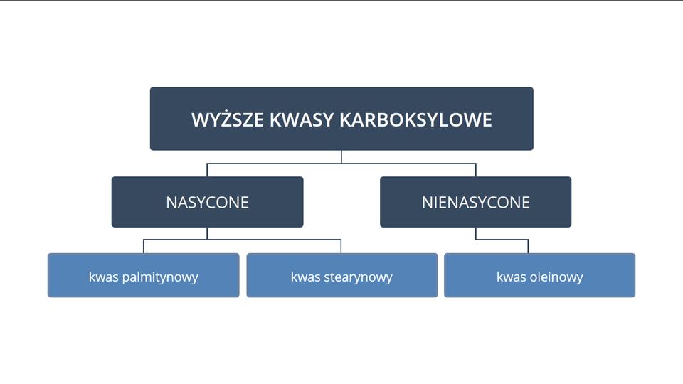 Kwasy nasycone inienasycone
