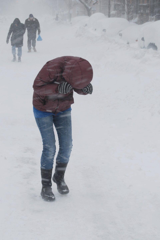 Zdjęcie przedstawia zawieję śnieżną wykonane za dnia wcentrum miasta. Po lewej stronie kadru chodnik pokryty grubą warstwą śniegu. Po prawej parking isamochody pokryte grubą pokrywą śniegu. Pokrywa ma około pół metra wysokości. Wieje bardzo silny wiatr ipada śnieg. Na pierwszym planie młoda osoba idzie po chodniku ubrana wspodnie dżinsowe iczerwoną puchową kurtkę zkapturem naciągniętym na głowę oraz grube wełniane rękawiczki. Pochylona stara się zakryć twarz rękami, ma też wyraźne trudności zporuszaniem się przy silnym wietrze. Wtle, dwie dorosłe osoby idą po chodniku. Osoby idą jedna za drugą. Pierwsza ubrana wczarną długą kurtkę do kolan. Głowę zakrywa kaptur. Druga osoba za nią ubrana wkrótką kurtkę zfutrzanym kołnierzem. Wszystkie osoby idą ztrudem wstronę wykonującego zdjęcie.