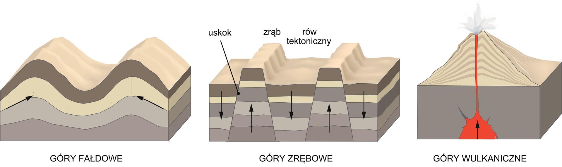 Na ilustracji trzy schematy. Schemat pierwszy – pofałdowany teren. Cztery warstwy wkolorach brązowych ibeżowych. Pomiędzy warstwą drugą itrzecią czarnymi strzałkami zwróconymi do środka inieco wgórę zaznaczono kierunek wypiętrzania gór fałdowych. Schemat drugi – cztery warstwy wkolorach brązowych ibeżowych. Czarnymi strzałkami zaznaczono kierunki uskoków. Ciągłość warstw jest zerwana. Dwa fragmenty uległy wyniesieniu trzy fragmenty obniżeniu. Schemat trzeci – przekrój przez wulkan. Dolna warstwa prostokątna brązowa. Na środku czerwona plama. To lawa. Strzałką zaznaczono kierunek wypływu lawy. Wgórnej części stożek wkolorze beżowym poprzecinany ciemniejszymi warstwami. Strumień czerwonej lawy pionowo do góry. Nad jej ujściem obłoczki dymu.