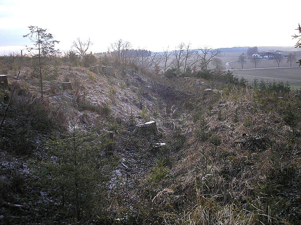 Pozostałości po wałach ziemnych tworzących grodzisko wbawarskim Mittelstetten Źródło: Dark Avenger~commonswiki, Pozostałości po wałach ziemnych tworzących grodzisko wbawarskim Mittelstetten, licencja: CC BY-SA 3.0.
