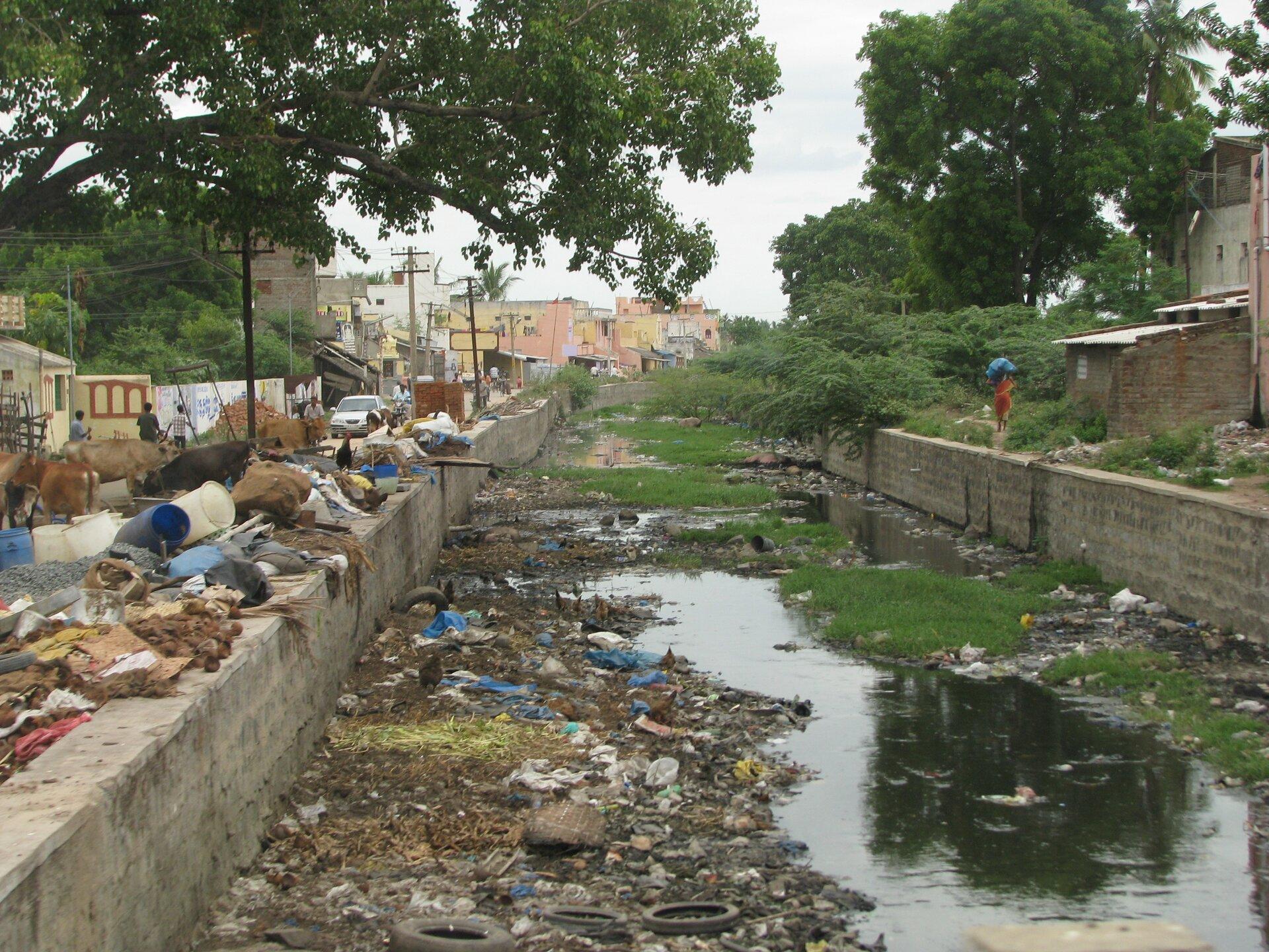 Na zdjęciu częściowo wyschnięte koryto rzeki. Brzegi wzmocnione betonowymi ścianami. Na dnie koryta ina brzegach duża ilość zanieczyszczeń. Plastikowe butelki, wiadra, szmaty. Wtle zabudowania.