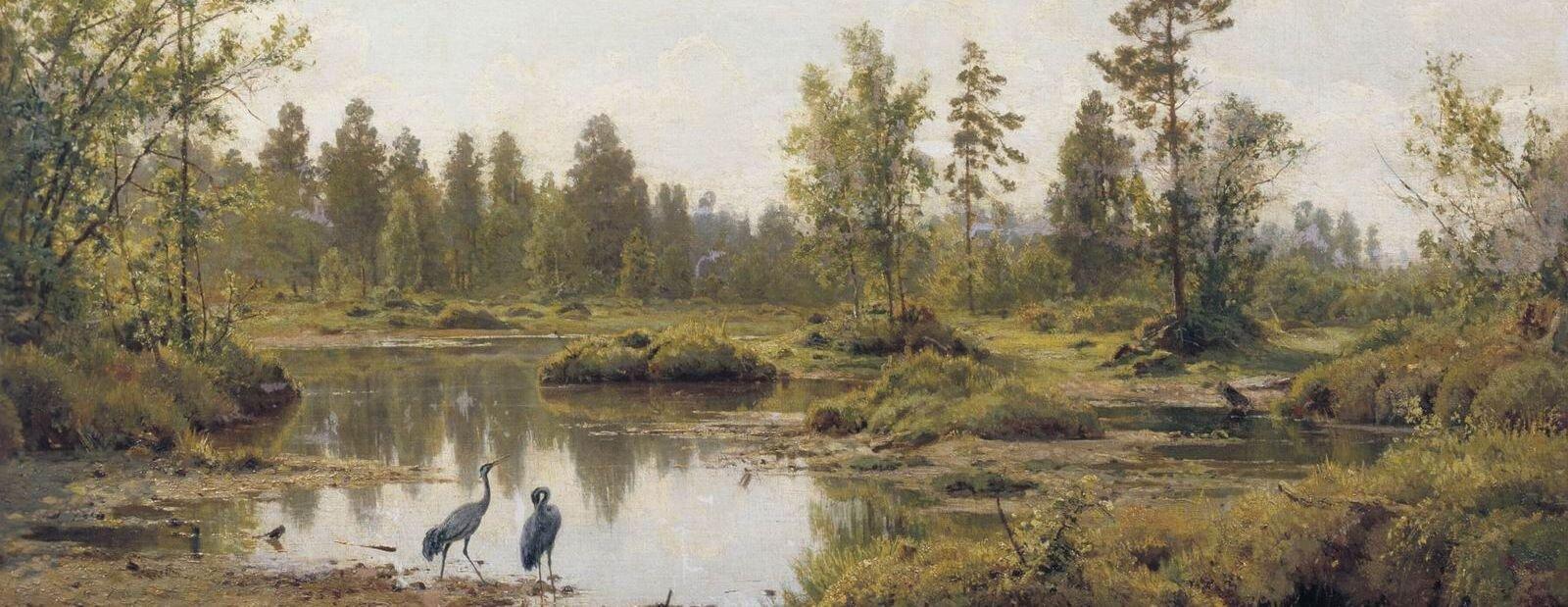 Bagno. Polesie Źródło: Iwan Szyszkin, Bagno. Polesie, 1890, domena publiczna.