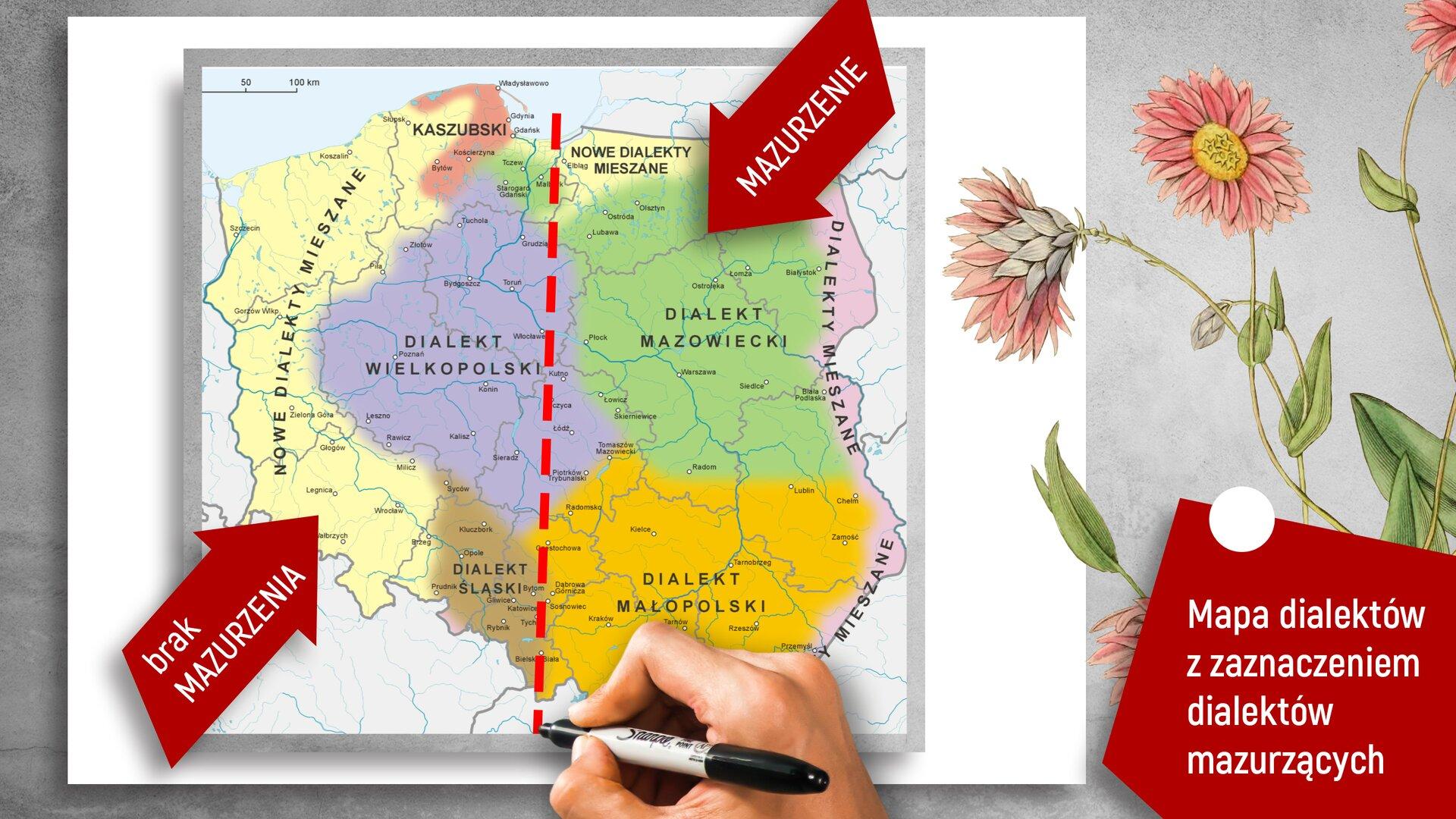 """Ilustracja przedstawia mapę Polski podzieloną na dialekty. Każdy znich jest oznaczony innym kolorem. Mapa jest również przedzielona wpołowie czerwoną przerywaną kreską. Wlewej części znajduje się czerwona strzałka znapisem: """"brak MAZURZENIA"""", apo drugiej stronie taka sama strzałka, ale znapisem: """"MAZURZENIE"""". Wprawym dolnym rogu umieszczono czerwony czworobok, awnim napis: """"Mapa dialektów zzaznaczeniem dialektów mazurzących""""."""