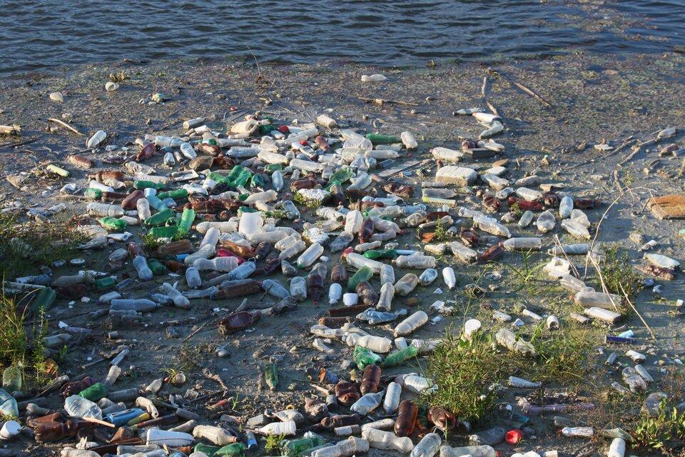 Zanieczyszczony brzeg jeziora Źródło: pixabay, Zanieczyszczony brzeg jeziora, licencja: CC 0.