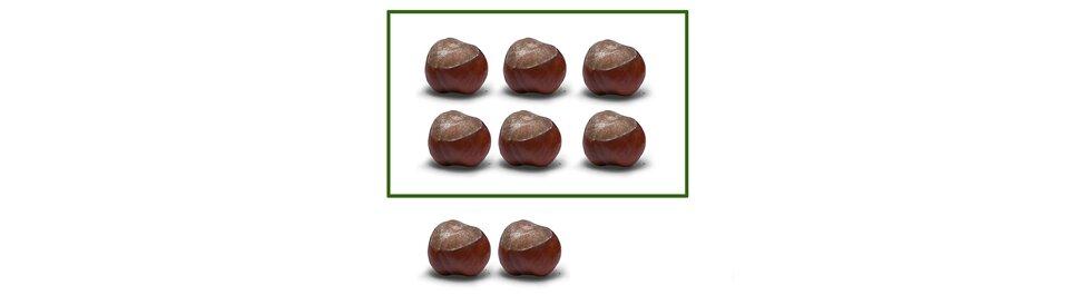 Na rysunku 8 kasztanów. Podzielono je na 2 rzędy po trzy kasztany wkażdym. Zostały 2 kasztany.