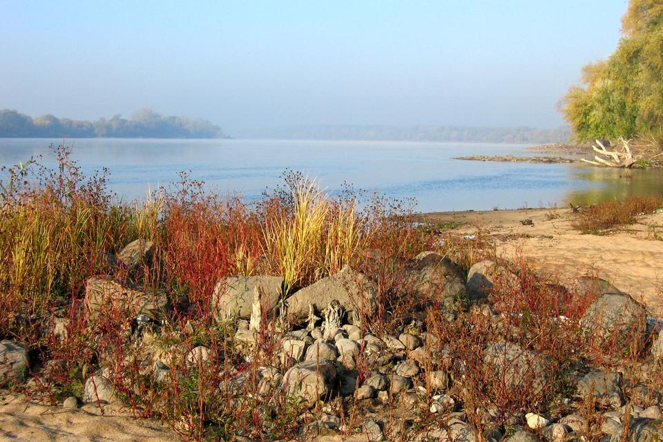 Fotografia prezentuje dolny bieg rzeki – koryto rzeczne jest szerokie, widoczne są piaszczyste łachy na rzece.