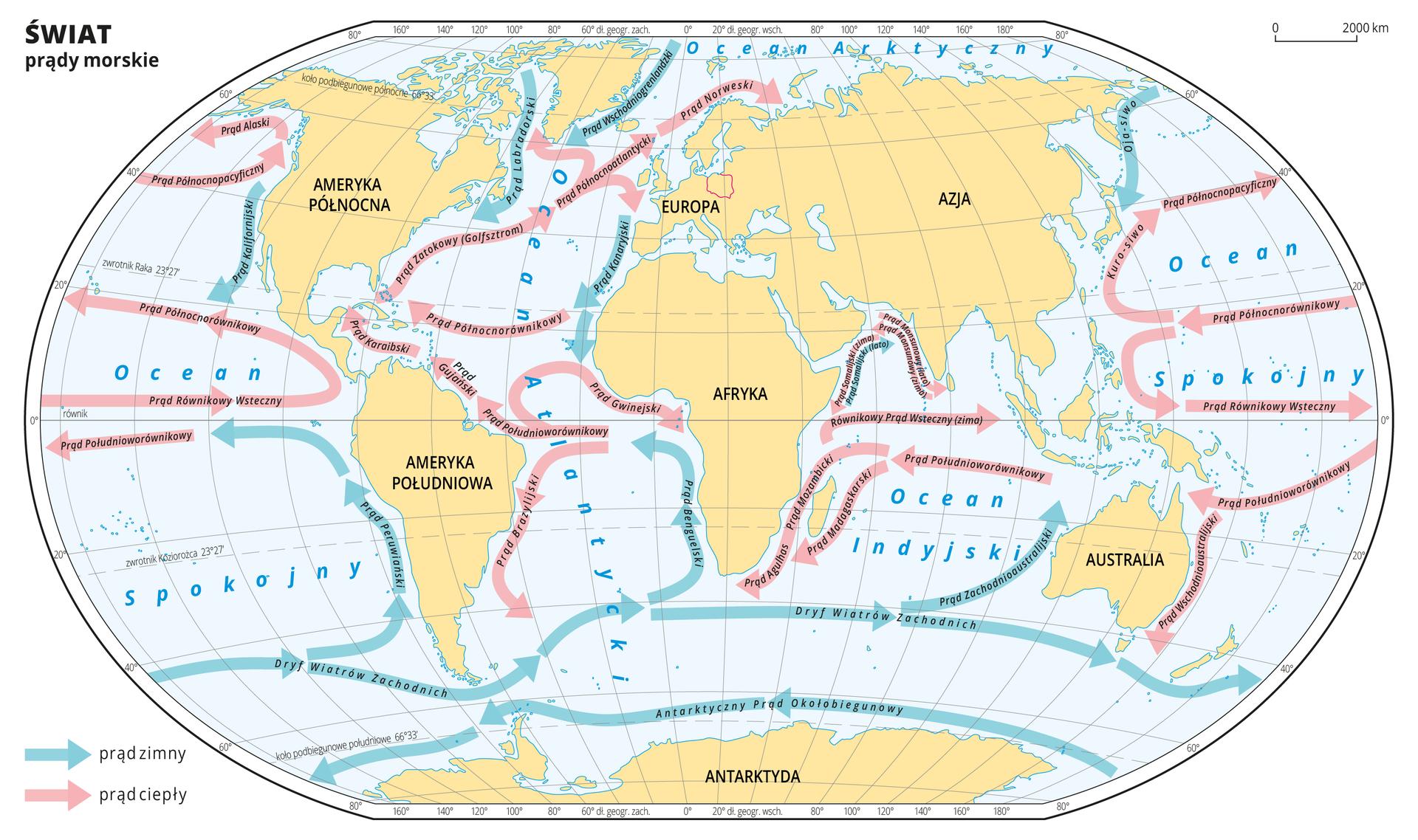 Ilustracja prezentuje mapę świata zrozmieszczeniem głównych prądów morskich ciepłych izimnych. Prądy ciepłe oznaczono różowymi liniami zakończonymi strzałkami wskazującymi kierunek prądu, prądy zimne oznaczono liniami wkolorze niebieskim. Linie prądów morskich biegną wzdłuż kontynentów, docierając do równika zmieniają kierunek. Na liniach prądów morskich opisano ich nazwy własne, np.: Prąd Brazylijski, Prąd Norweski.