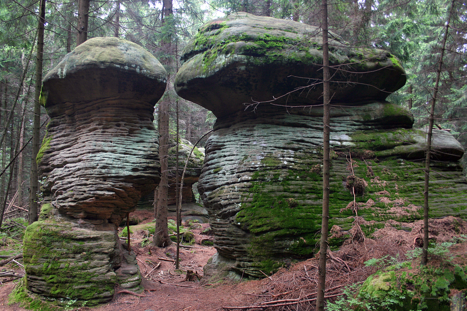 Fotografia prezentuje dwie stojące obok siebie skały kształtem przypominające grzyby, będące skutkiem erozji wiatrowej.