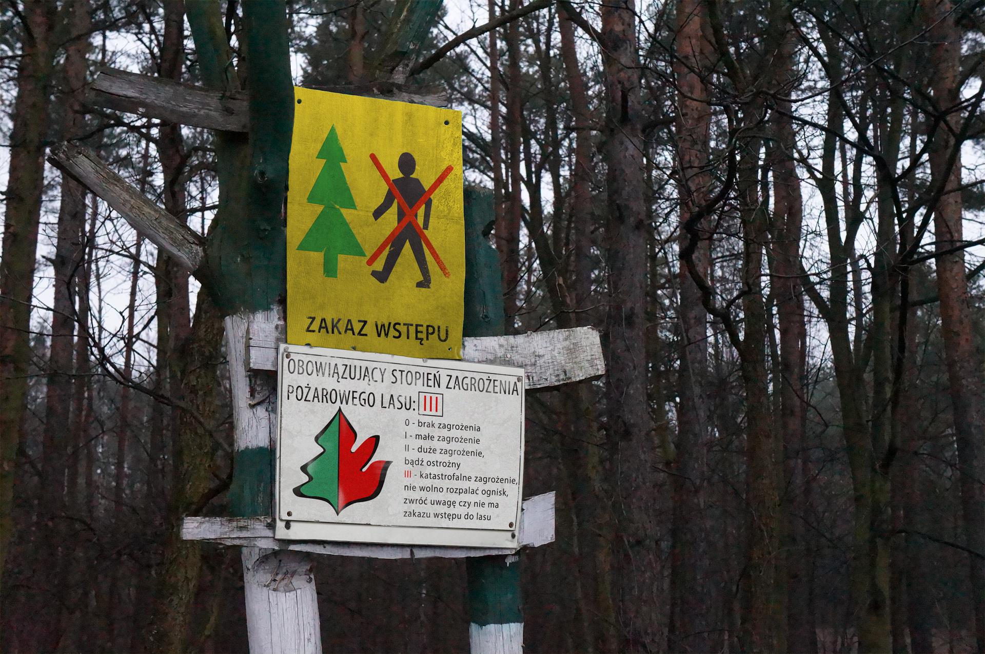 """Zdjęcie tabliczki informującej ostopniu zagrożenia pożarowego oraz tabliczka """"zakaz wstępu do lasu"""""""