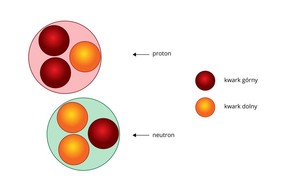 Schemat przedstawiający proton ineutron jako zbiór kwarków