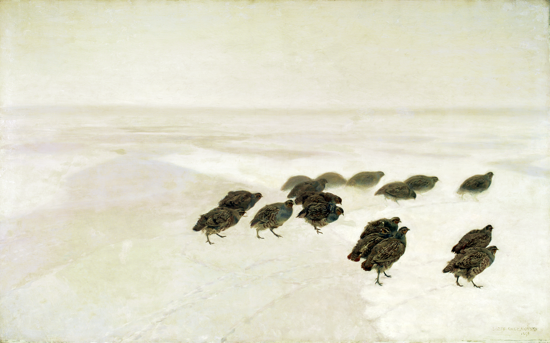 """Ilustracja przedstawia obraz olejny """"Kuropatwy na śniegu"""" autorstwa Józefa Chełmońskiego. Na monochromatycznym, jasnym tle śnieżnego pejzażu artysta namalował stadko szaro-brązowych kuropatw. Oszczędnie potraktowana, bezkresna przestrzeń białych pól kontrastuje zciemnymi, realistycznie namalowanymi ptakami, które skulone, ostrożnie stąpają po zimnym, nieznanym gruncie. Kuropatwy idące najdalej wgłębi płótna są jaśniejsze, mniej wyraźne, jakby zamglone co potęguje wrażenie perspektywy wobrazie."""