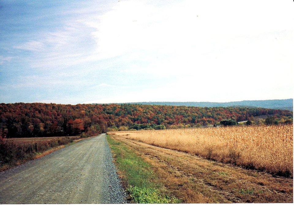 Wiejska droga 1 Źródło: Shari Weinsheimer, domena publiczna.