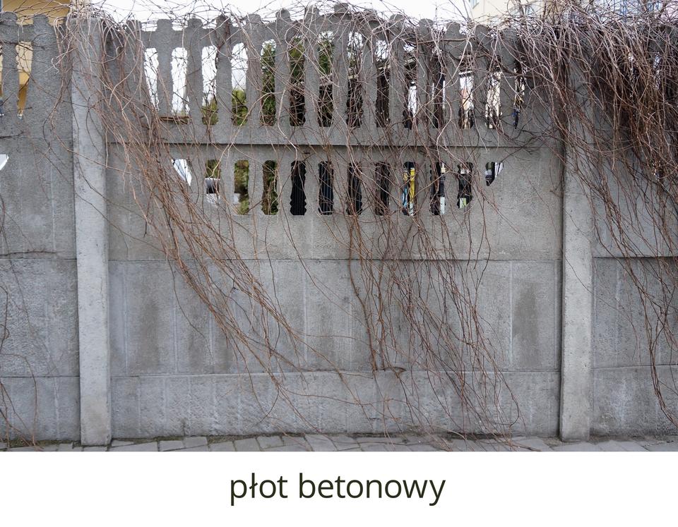 Płot betonowy obrośnięty pnączami, wykonany zpodłużnych bloków betonowych umieszczanych pomiędzy pionowymi słupami owysokości około trzech lub czterech metrów. Dolna część płotu zwarta, górna ażurowa uformowana na kształt sztachet płotu.