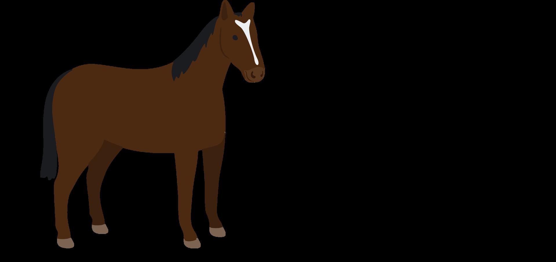 koń ilustracja Źródło: Shutterstock, tylko do użytku edukacyjnego na epodreczniki.pl.