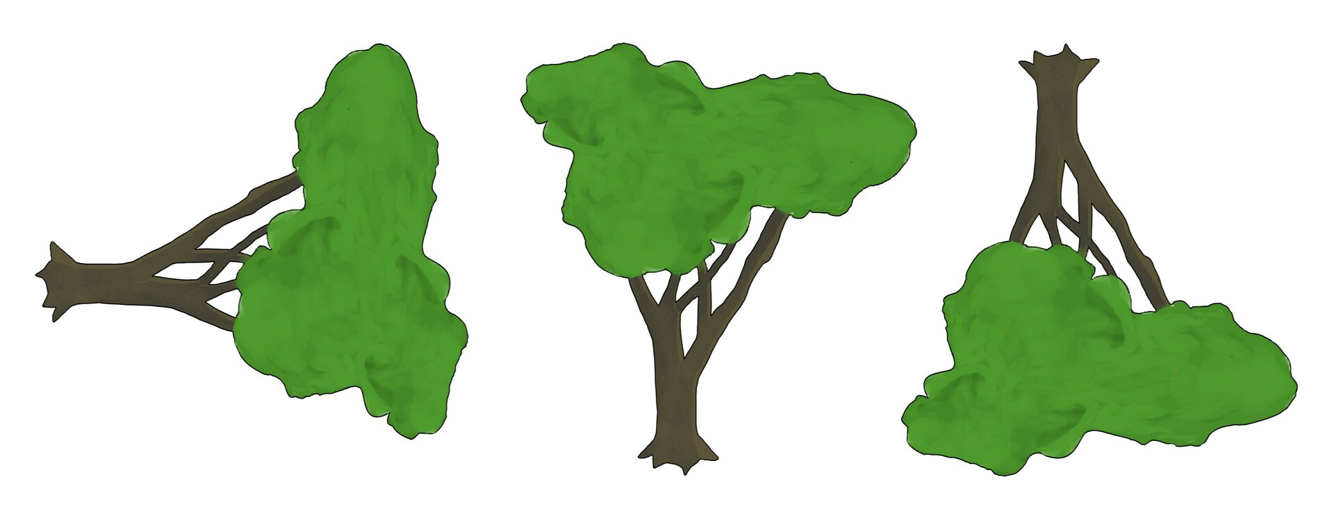 Rysunek dwóch drzew.