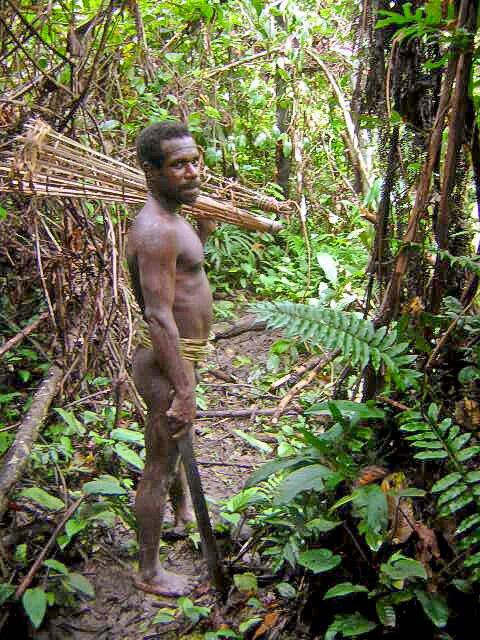na zdjęciu widać mężczyznę na tle gęsteego lasu.Jest to człowiek zplemienia Korowai zNowejGwinei. Plemie to słyniezbudowy domów na drzewach.