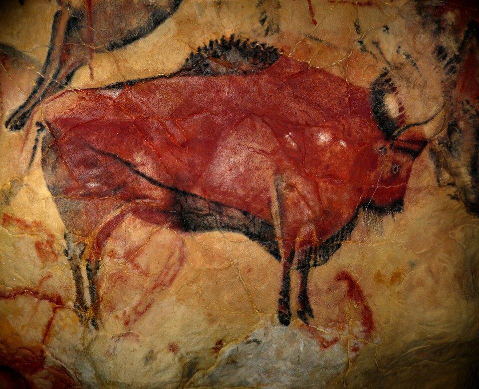 Rysunek na ścianie wjaskini przedstawiający bizona namalowany czerwoną farbą.