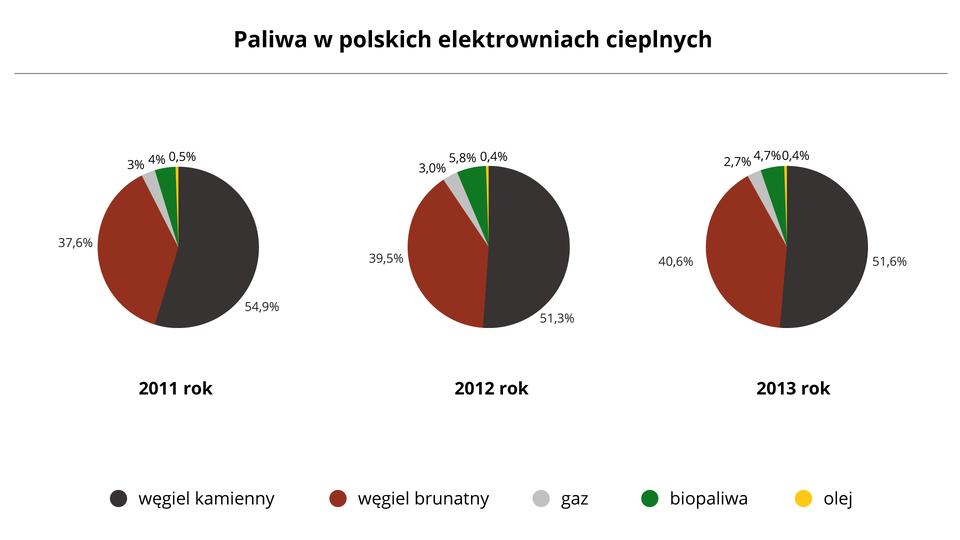 Na ilustracji trzy diagramy kołowe – struktura paliwowa wpolskich elektrowniach cieplnych.Pierwszy diagram dla roku 2011 – węgiel kamienny 54,9%, węgiel brunatny 37,6%, gaz 3,0%, biopaliwa 4,0%, olej 0,5%. Drugi diagram dla roku 2012 – węgiel kamienny 51,3%, węgiel brunatny 39,5%, gaz 3,0%, biopaliwa 5,8%, olej 0,4%. Trzeci diagram dla roku 2013 – węgiel kamienny 51,6%, węgiel brunatny 40,6%, gaz 2,7%, biopaliwa 4,7%, olej 0,4%.