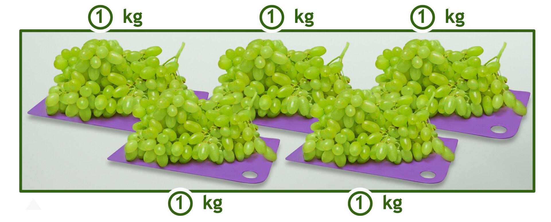 Rysunek pięciu tacek winogron. Na każdej leży 1 kilogram. Cena winogron 2 euro za 1 kilogram. Ile zapłacimy za 5 kg winogron?