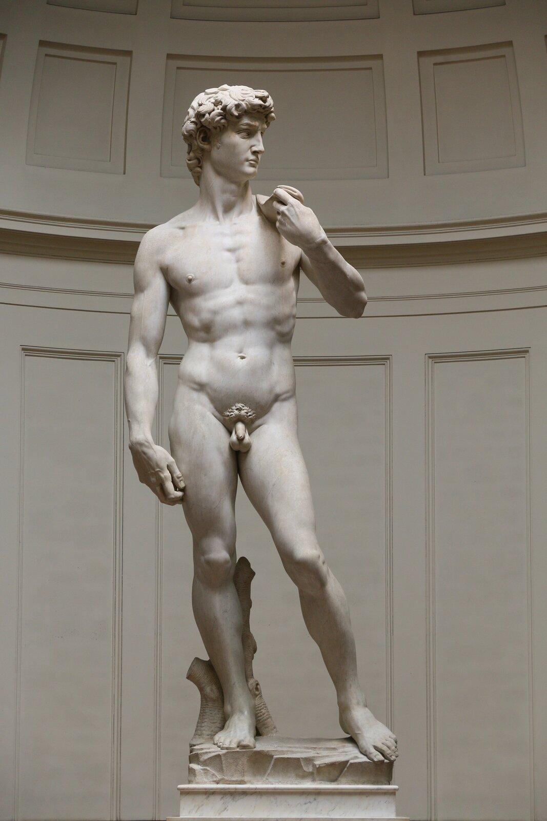 """Ilustracja przedstawia rzeźbę """"Dawid"""" autorstwa Michała Anioła. Rzeźba ukazuje nagiego młodego, umięśnionego mężczyznę. ustawiony jest wkontrapoście na cokole. Wlewej ręce trzyma przerzuconą przez ramię procę. Prawa ręka jest opuszczona swobodnie wzdłuż ciała. Dawid spogląda wlewą stronę. Jest poważny iskupiony. Ma kręcone włosy."""