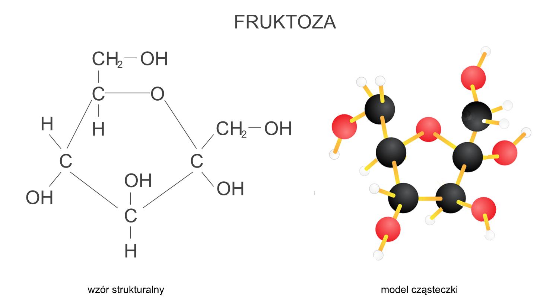 Budowa fruktozy