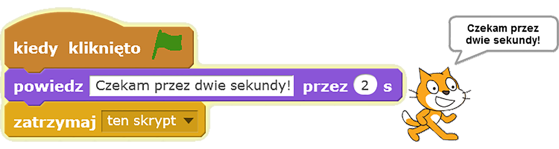 Skrypt realizujący wyświetlenie wdymku tekstu podanego wpolu edycyjnym przez określony czas po kliknięciu zielonej flagi