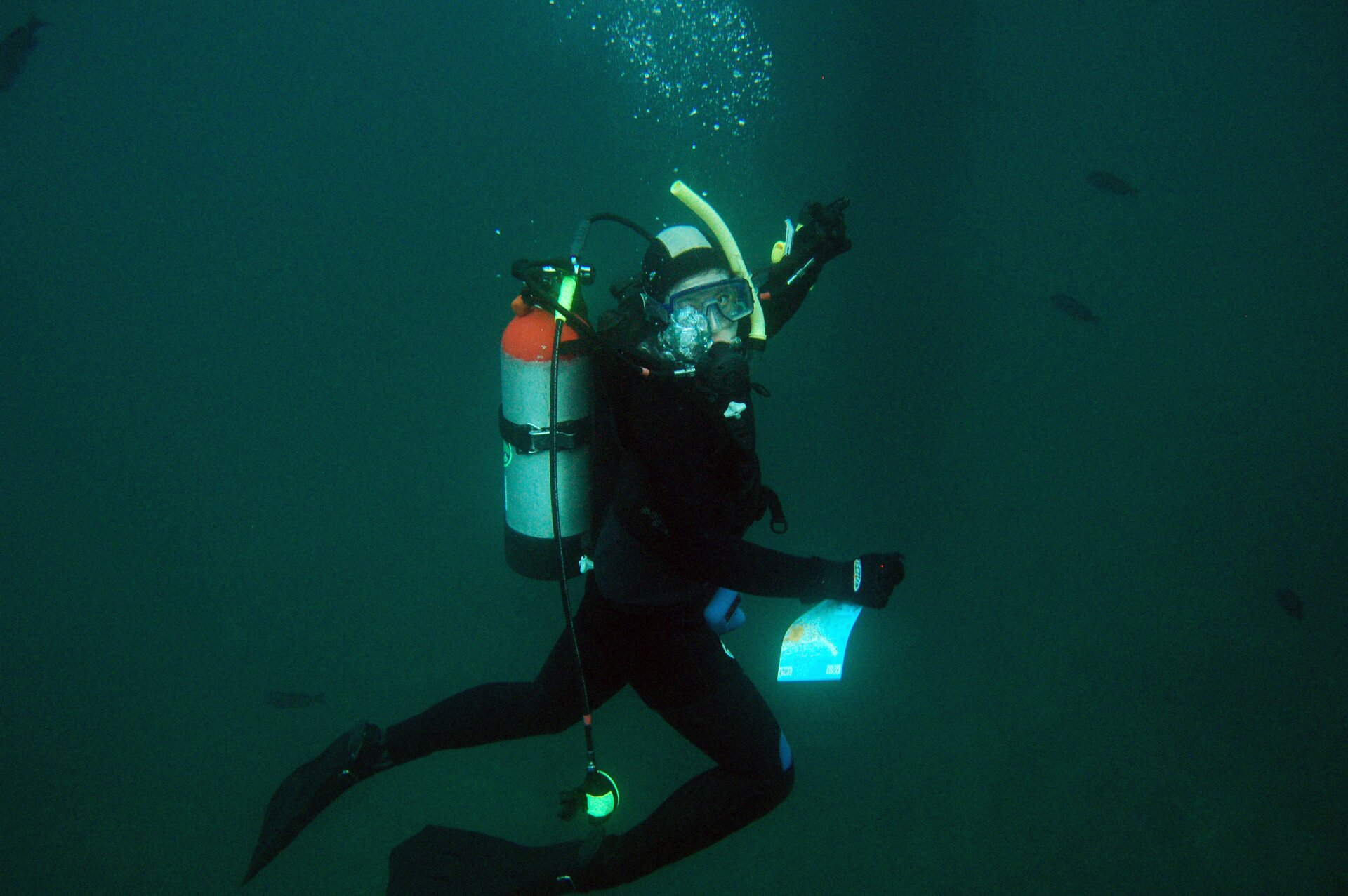 Zdjęcie przedstawia płetwonurka wwodzie ubranego wczarny kombinezon, zmaską iaparatem tlenowym na plecach. Płetwonurek spogląda na osobę wykonującą mu zdjęcie ipokazuje ręką kierunek dalszej trasy. Woda ciemna, ale widać sylwetki pływających dookoła ryb.