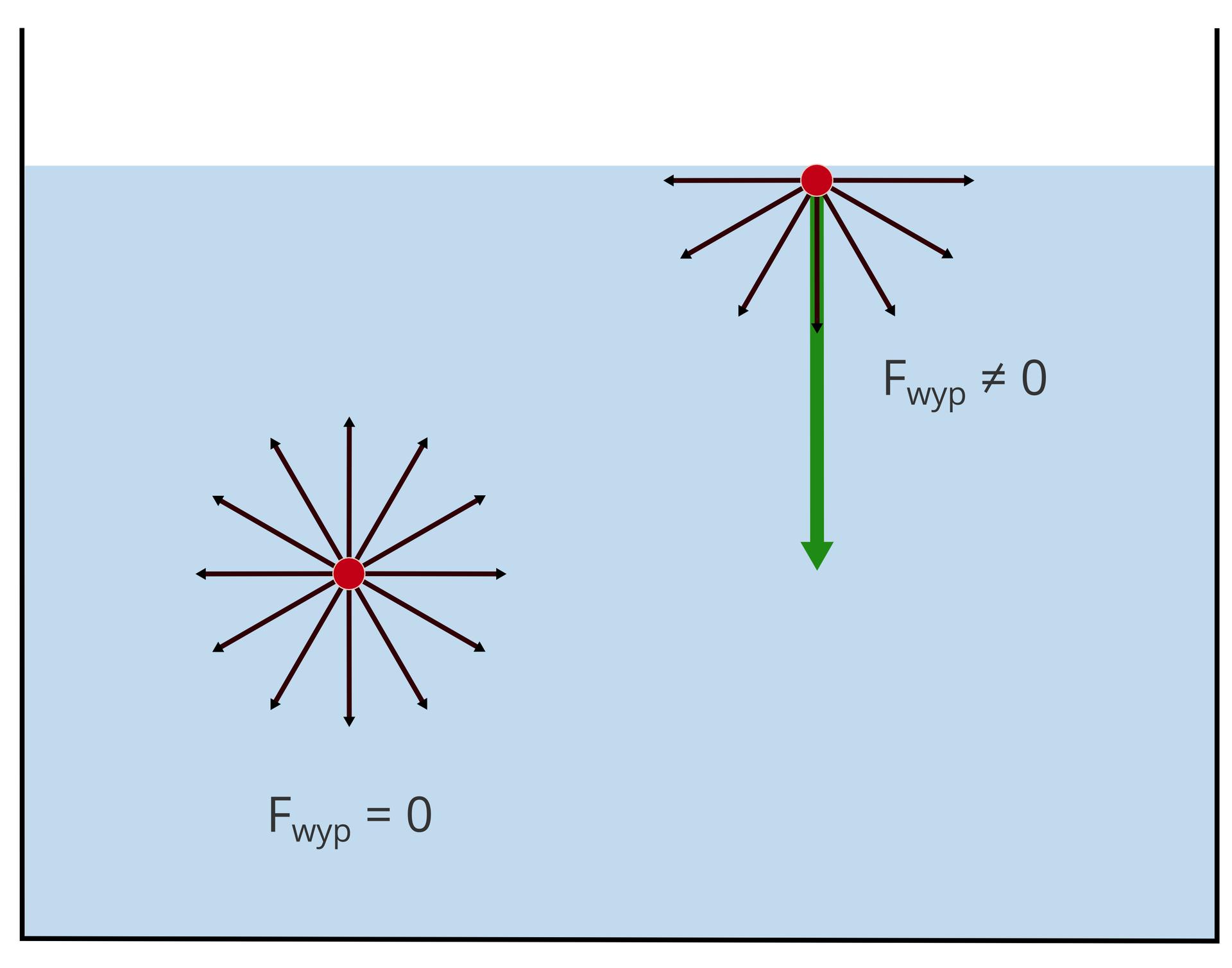 Na cząsteczki wody znajdujące się wewnątrz ina powierzchni cieczy działają siły spójności. Wewnątrz cieczy siły te działają równomiernie we wszystkich kierunkach irównoważą się. Na cząsteczki znajdujące się na powierzchni działa siła wypadkowa skierowana do wnętrza cieczy – siła napięcia powierzchniowego. Na powierzchni cieczy tworzy się błonka.